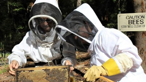 Hunter Valley Amateur Beekeepers Sustainable Futures Convention 2017, 25-26 March Gloucester NSW